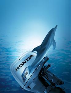 HONDA_BF50_-_Cover_dolphin